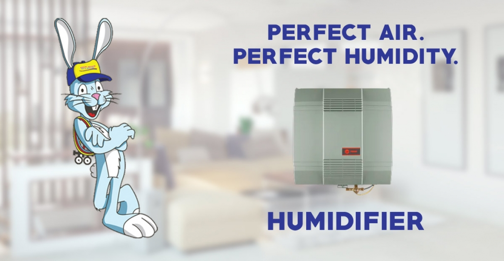 Guide to HUMIDIFIER – Benefits, Types Cost & More
