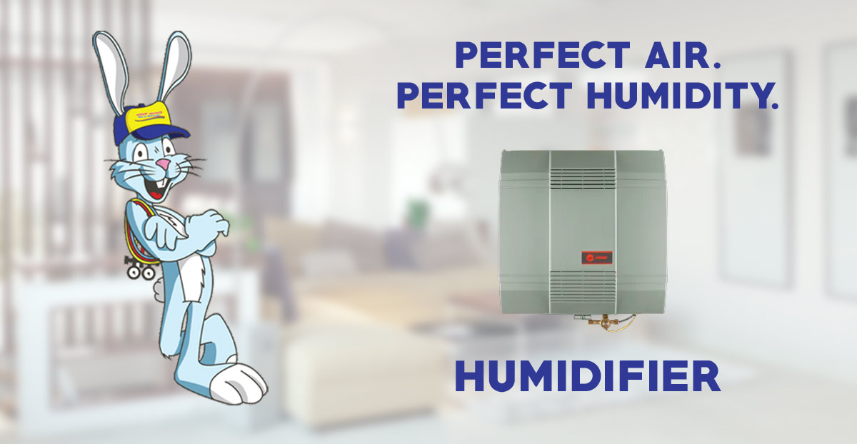 Humidifier Guide - Benefits, Types Cost