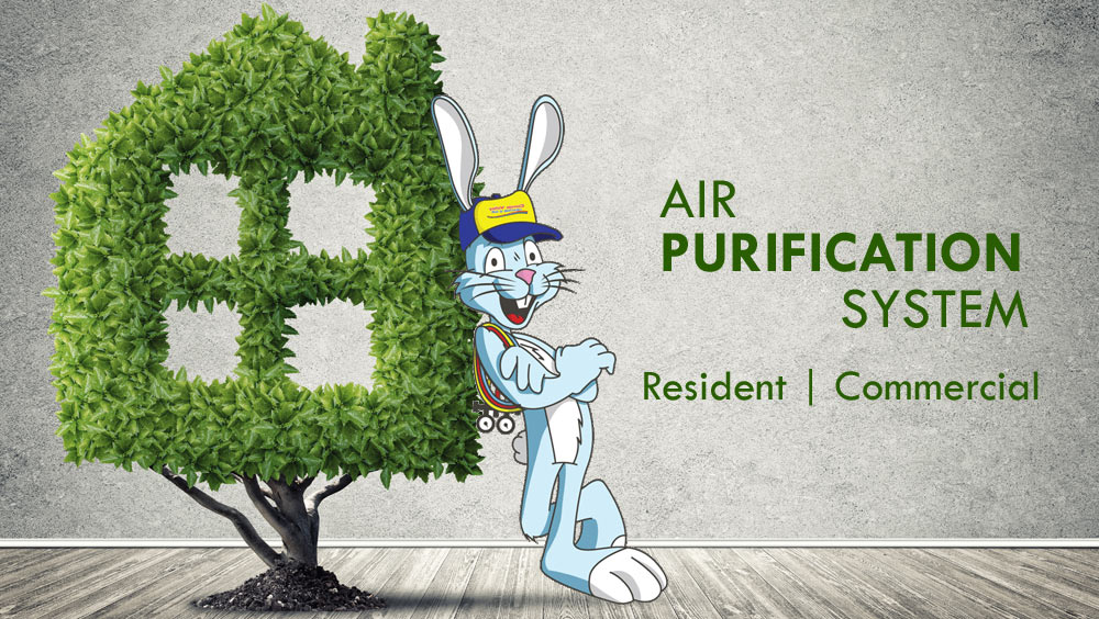 Air Purification System Installation in the Conejo Valley and Surroundings